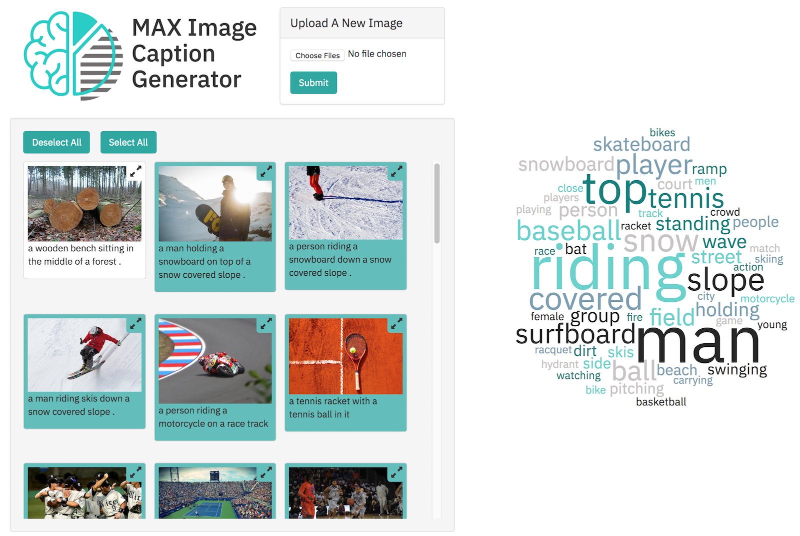 max-caption-generator